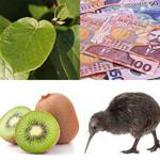 4-buchstaben-lösung-kiwi