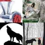 4-buchstaben-lösung-wolf