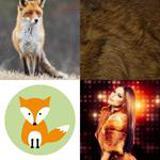 5 Buchstaben Lösung Fuchs