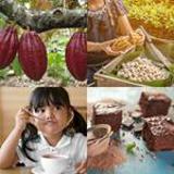5 Buchstaben Lösung Kakao