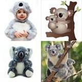 5 Buchstaben Lösung Koala
