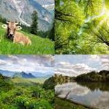 5 Buchstaben Lösung Natur
