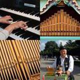 5 Buchstaben Lösung Orgel