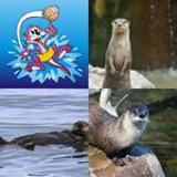 5 Buchstaben Lösung Otter