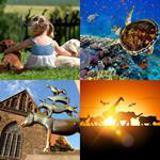 5 Buchstaben Lösung Tiere