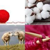 5 Buchstaben Lösung Wolle