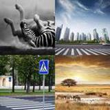5 Buchstaben Lösung Zebra