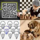 6 Buchstaben Lösung Clever