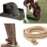 6 Buchstaben Lösung Cowboy