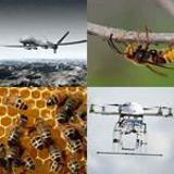 6 Buchstaben Lösung Drohne