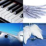 6 Buchstaben Lösung Flügel