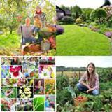 6 Buchstaben Lösung Garten