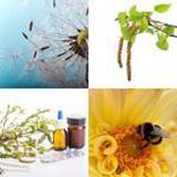 6 Buchstaben Lösung Pollen