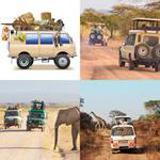 6 Buchstaben Lösung Safari