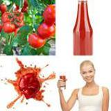 6 Buchstaben Lösung Tomate