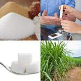 6 Buchstaben Lösung Zucker