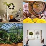 7 Buchstaben Lösung Botanik