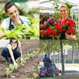 7 Buchstaben Lösung Gärtner