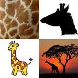 7 Buchstaben Lösung Giraffe