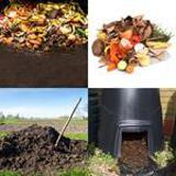 7 Buchstaben Lösung Kompost