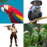 7 Buchstaben Lösung Papagei