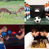 7 Buchstaben Lösung Rivalen