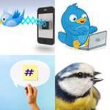 7 Buchstaben Lösung Twitter