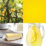 7 Buchstaben Lösung Zitrone