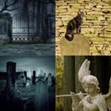 8 Buchstaben Lösung Friedhof
