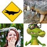 8 Buchstaben Lösung Krokodil