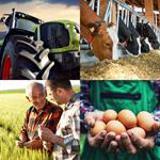 8 Buchstaben Lösung Landwirt