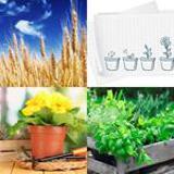 8 Buchstaben Lösung Pflanzen