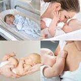8 Buchstaben Lösung Säugling