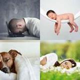 8 Buchstaben Lösung Schlafen