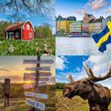 8 Buchstaben Lösung Schweden