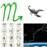 8 Buchstaben Lösung Skorpion