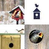 9 Buchstaben Lösung Vogelhaus